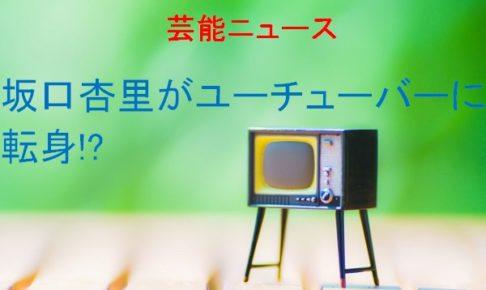 坂口杏里がユーチューバー動画画像